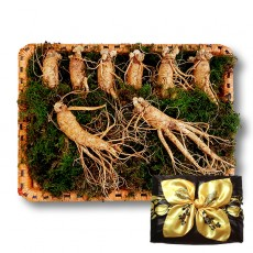 수삼 선물용 특대 (6~10뿌리내외, 500g)