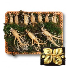 수삼 선물용 대 (8~12뿌리내외, 500g)