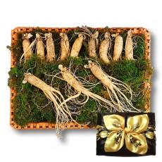 수삼 선물용 중 (10~14뿌리내외, 500g)